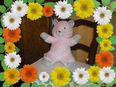 L'ours à câliner