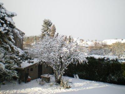 La neige, suite........... et sapin