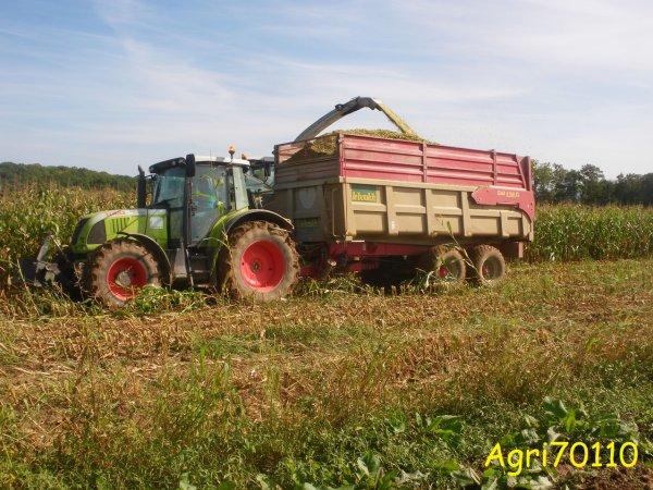 Ensilage de maïs 2011