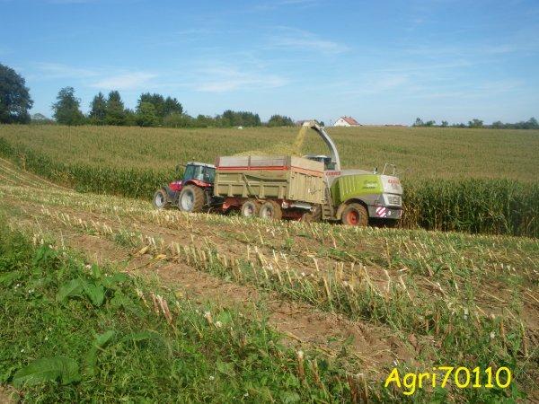 Ensilage de maïs 2011 (suite)