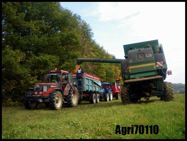 Récolte du maïs grain 2011 (suite)