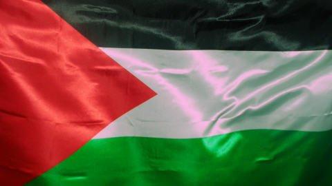 Drapeau De La Palestine..