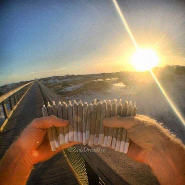 Ca sent la bonne soirée sur la plage, les dunes, le coucher de soleil...