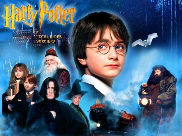 HARRY POTTER a l'école des sorcier