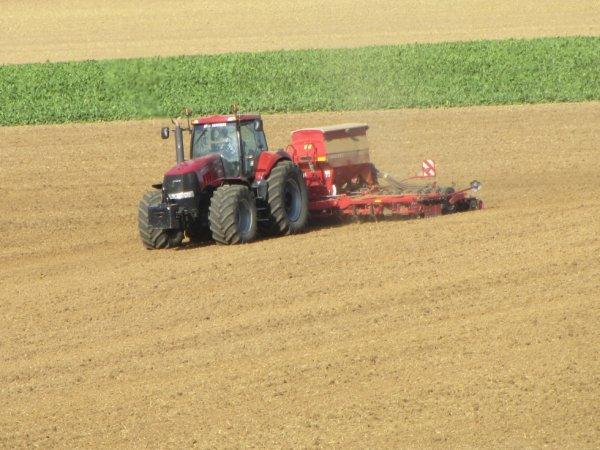 semis avec un case magnum 315 et horch 4 m ( merci a agrii60 pour les photo )