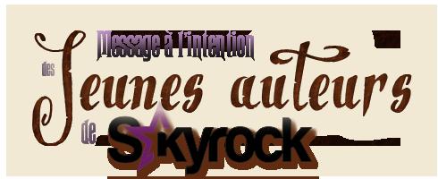 Message aux jeunes auteurs de Skyrock