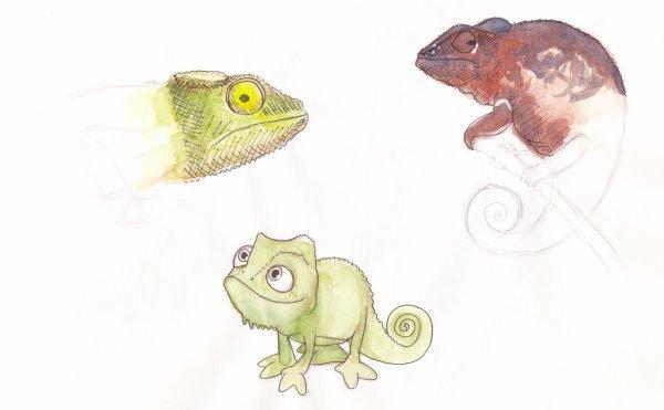 travail n°4, étude animaux, d'autres petits persos, fusain