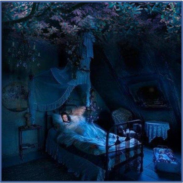 La forêt des insomniaques...