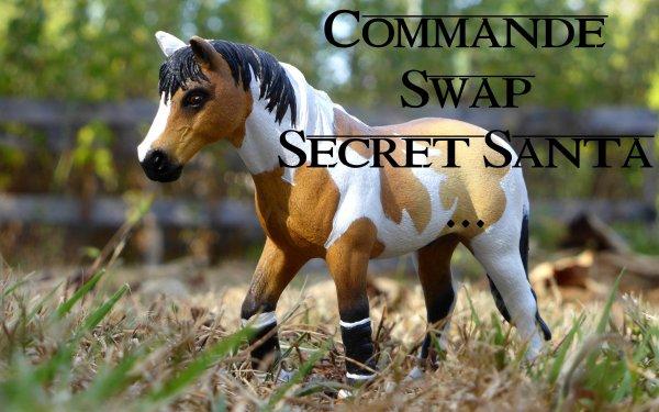 Commande, Swap, Secret Santa, ...