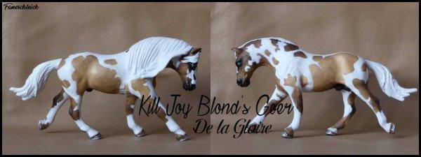Kill Joy Blon's Goer