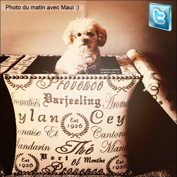 .  29/04/12 : Ashley a posté une magnifique photo de sa chienne Maui, sur son compte Twitter.  .