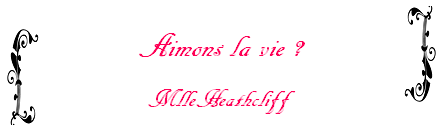 Fanfiction n°45 de MlleHeathcliff