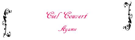 Fiction n°9 de Ayame