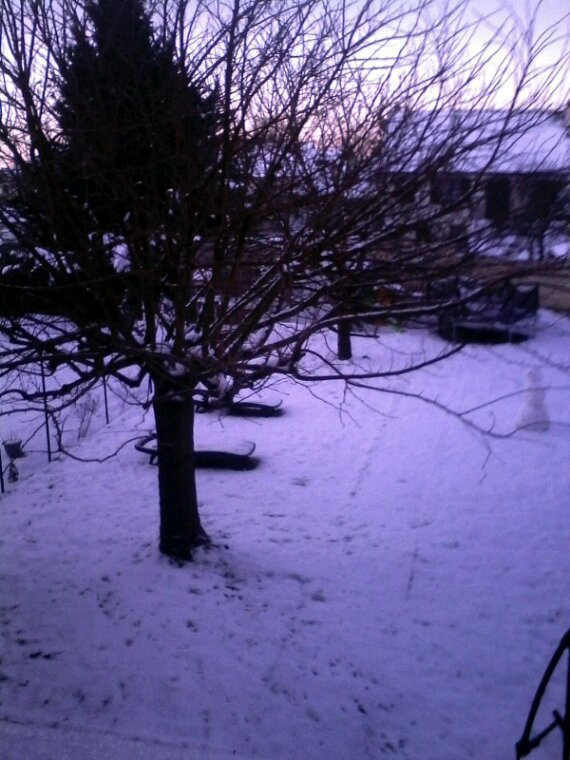 Mon jardin Enneiger