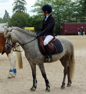 """"""" L'air du paradis est celui qui souffle entre les oreilles d'un cheval """""""