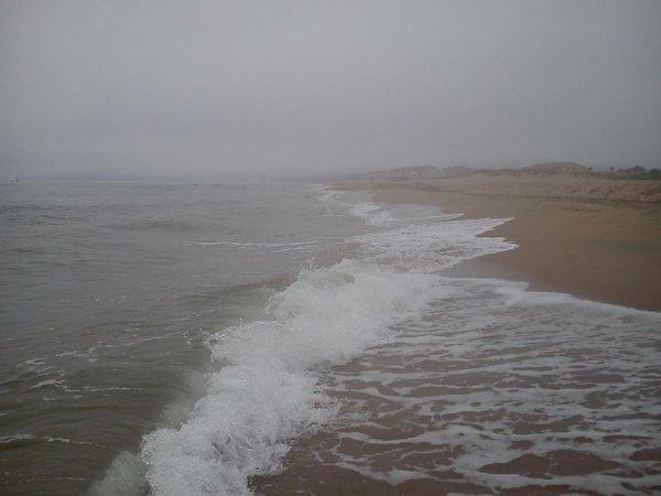 Tu vois, mon coeur est vide, comme cette plage.