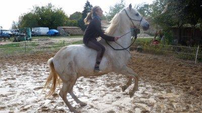 """"""" A ce moment précis je n'étais plus humaine, il n'était plus cheval, nous étions juste seuls justes à deux juste heureux """""""