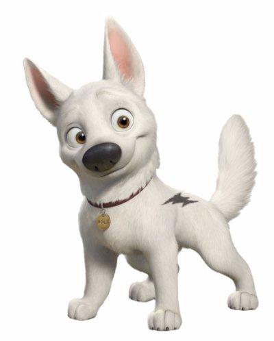 Volt les seuls beaux yeux sont ceux qui vous regardent - Volt chien race ...