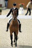 Photo de international-dressage