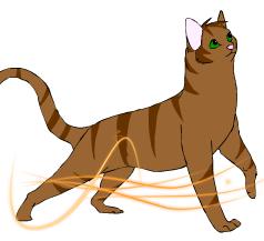 Chapitre 3 : L'arrivée de deux nouveaux chatons ~