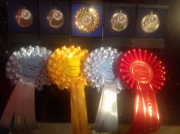 CCBA  42nd ALL COLOUR SHOW 2014