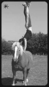 Quelqu'un a dit un jour que faire trop de choses en plus de l'équitation fait perdre l'équilibre de partout, mais il ne savait pas que l'on pouvait faire tout a la fois !