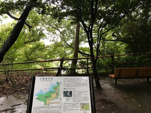 台風と秋と柿田川公園