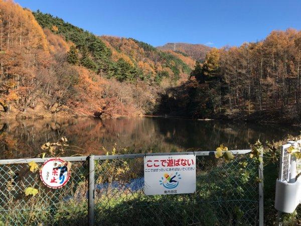 日本の秋2