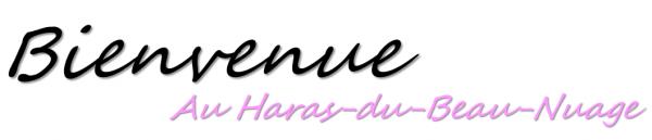 Bienvenue aux Haras du Beau Nuage !♥