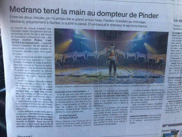 """""""l'article Lucrio du jour""""."""