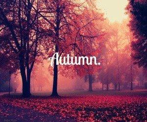 bienvenu automne