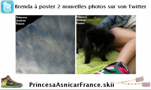 Brenda à poster deux nouvelles photos d'elles sur son twitter . Nous pouvons remarquez son petit chien noir .