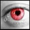 Le plaisir  des yeux est le point  de départ du sentiment..