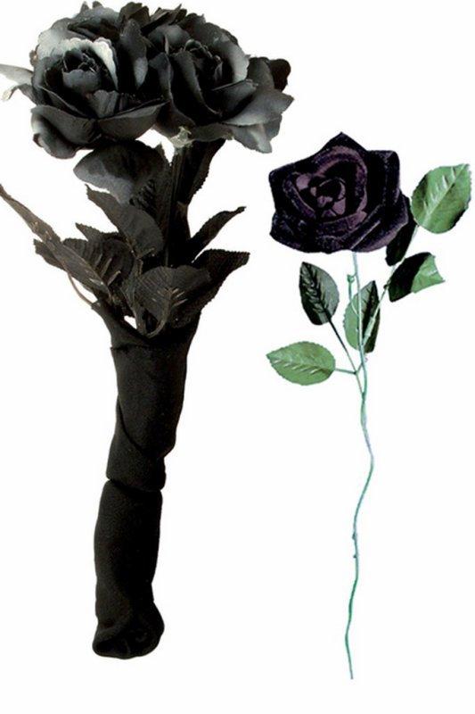 "JOLIE IMAGE""ROSES NOIR""................"