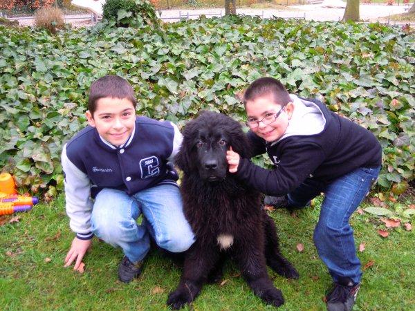 mes homme de ma vie avec leur chien
