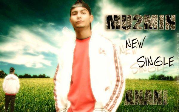 ( Mu2MiN ) 2010