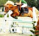 Photo de Wonderful--Pony
