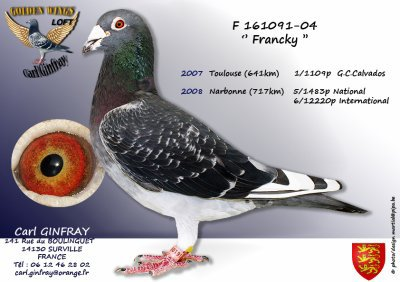 FRANCKY 3 : As pigeon ALCN Barcelone sur 3ans, 46ème As pigeon National sur 3ans