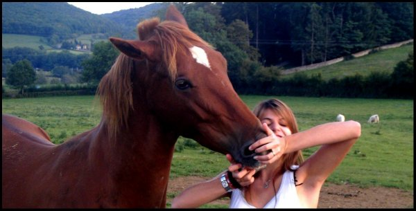 Tu peux ouvrir ton coeur aussi grand que tu le veux, mais tant que ton cheval n'ouvre pas le sien, il n'y a aucun amour sincere et rien ne sera fait avec complicité...