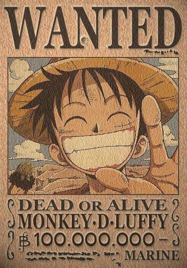 Avis de recherche luffy!!!!