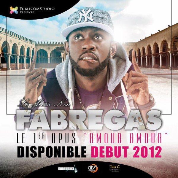 EXCLUSIVITÉ/ TEASER FABREGAS - AMOUR AMOUR/ PREMIER OPUS SOLO DISPONIBLE LE 14 FÉVRIER 2011