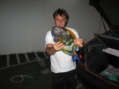 poisson perroquet premier beau poisson pris a la reunion (saint pierre)