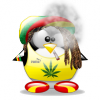 Ousman - Rasta For life