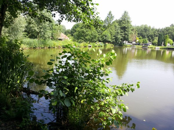 Notre étang d'erbisoeul