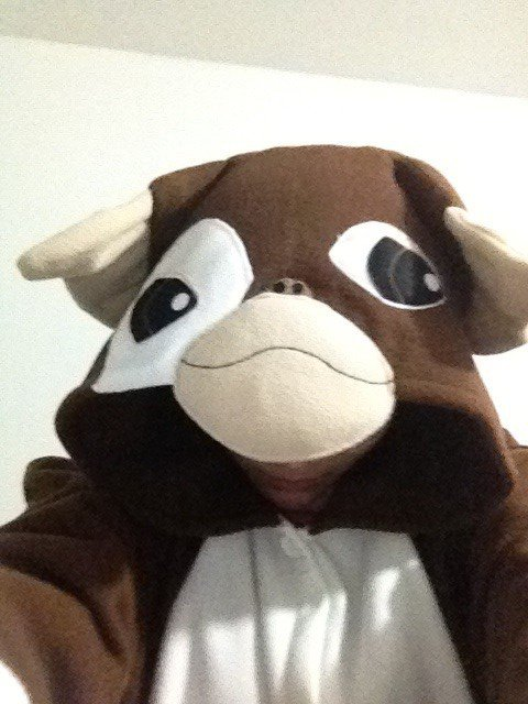 Gizmo Kigurumi The Gremlin animal Costume
