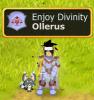 Un nouvel auteur, Ollerus