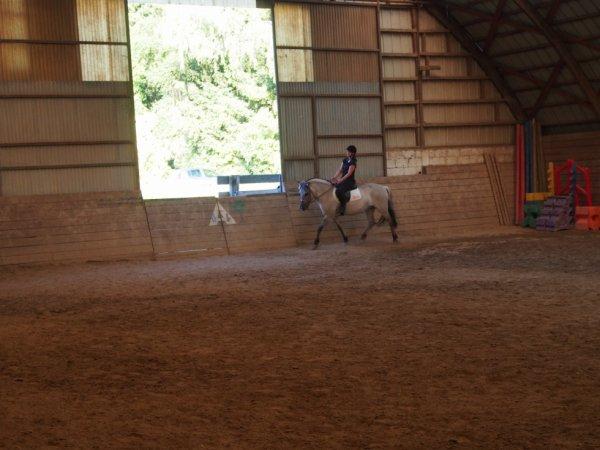 """"""" Tu dois te fondre dans ton cheval , ne faire qu'un , jusqu'à sentir en toi le sol au bout de ses sabots , alors tu deviens cavalier """""""