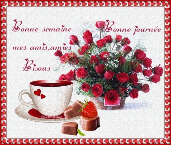 Bonne Semaine à Tous Mes Amis ,amies Couvrez Vous ,le