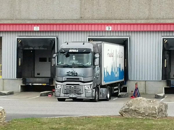 Renault  T transport  steli  68