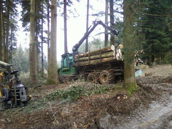 autre chantier forestier